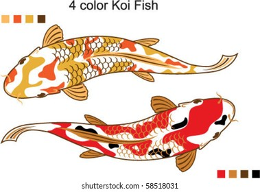 4 color Koi Fish Vector