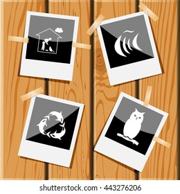 4 images: home cat, fish, killer whale as recycling symbol, owl. Animal set. Photo frames on wooden desk. Vector icons.