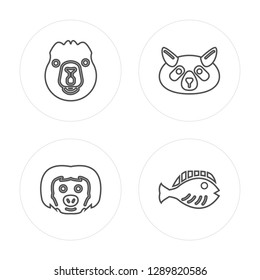 4 line Beaver, sloth, Raccoon, Flounder modern icons on round shapes, Beaver, sloth, Raccoon, Flounder vector illustration, trendy linear icon set.