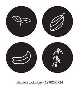 4 linear vector icon set : Basil, Banana, shallots, Bamboo isolated on black background, Basil, Banana, shallots, Bamboo outline icons