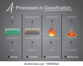 4 processes in Gasification Drying, Pyrolysis, Combustion, Reduction. Info graphic vector.