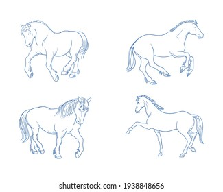 4 set of horse, Doodle hand drawn vector illustration