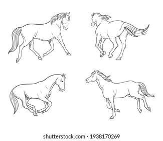 4 set of horse, hand drawn vector illustration.