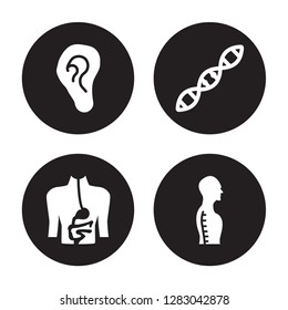 4 vector icon set : Ear lobe side view, Digestive System, Dna, Column inside a male human body in view isolated on black background