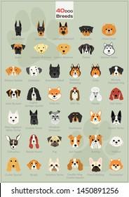 40 dog breeds illustration background