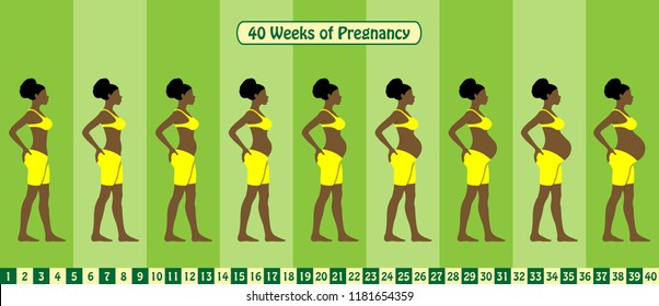 40 Weeks of pregnancy stages with Afro American woman wears bra and short spandex. All the objects and body stages are in different layers and the text types do not need any font.