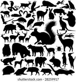 46 pieces of detailed vectoral wild animal silhouettes.