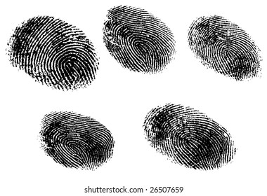 5 Black and White Vector Fingerprints - Very accurately scanned and traced ( Vector is transparent so it can be overlaid on other images, vectors etc.)