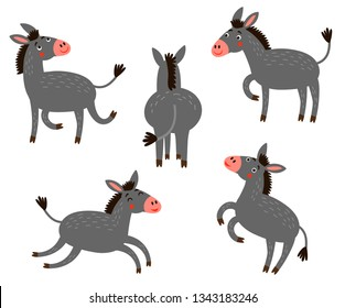 5 Donkeys. Vector set of cute donkeys.