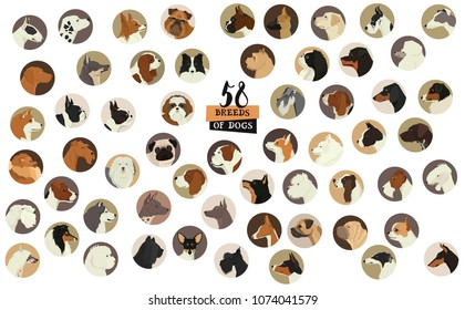 58 Breeds of dogs Isolated objects Round frame