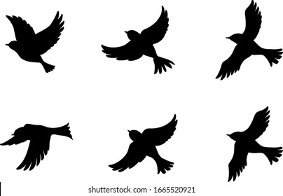 6 Flying birds silhouette set