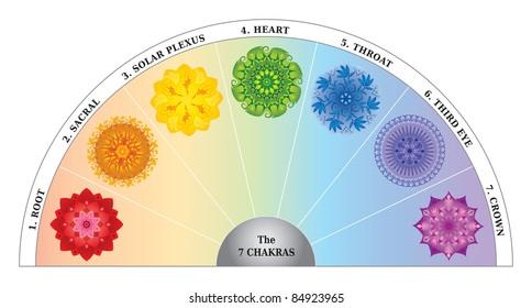 7 Chakra Color Chart / Semicircle with Mandalas