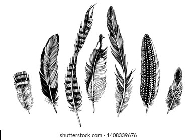 7 hand drawn feathers on white background. Vector illustration