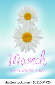 8 march - happy woman's day. Greeting card with daisies or chamomiles forming the number eight