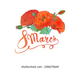 8 march.  Woman Day. Vector card with poppy flowers