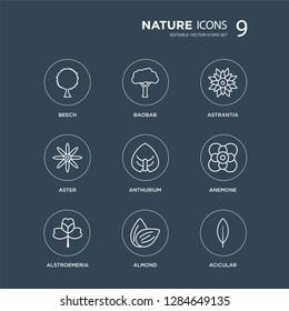 9 Beech, Baobab, Alstroemeria, Anemone, Anthurium, Astrantia, Aster, Almond modern icons on black background, vector illustration, eps10, trendy icon set.