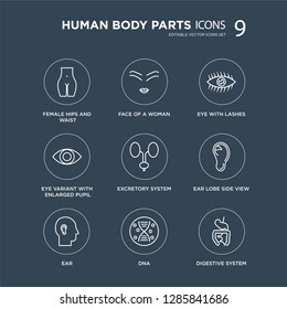 9 Female hips and waist, Face of a woman, Ear, Ear lobe side view, Excretory system, Eye with lashes modern icons on black background, vector illustration, eps10, trendy icon set.