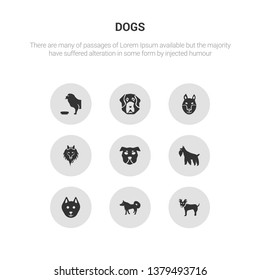 9 round vector icons such as russian toy dog, samoyed dog, schipperke dog, schnauzer shar pei contains shetland sheepdog shiba inu st. bernard tibetan mastiff russian toy samoyed icon3_, gray dogs