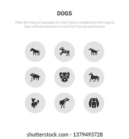 9 round vector icons such as bloodhound dog, boerboel dog, border collie dog, borzoi boston terrier contains boxer bracco italiano brittany bull terrier bloodhound boerboel icon3_, gray dogs icons