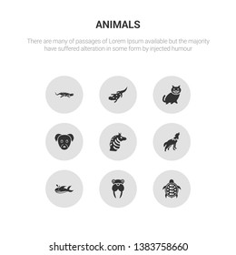 9 round vector icons such as turtle, walrus, whale, wolf, zebra contains puppy, kitten, salamander, iguana. turtle, walrus, icon3_, gray animals icons