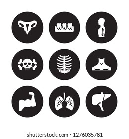 9 vector icon set : Human Uterus, Teeth, Muscle, Neck, Ribs, Spine, skull with crossed bones, Lungs isolated on black background