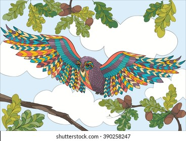 A4 Vector Colorful Zentangle Stylized Abstract Wise Owl Fly And Flora Art Color Therapy