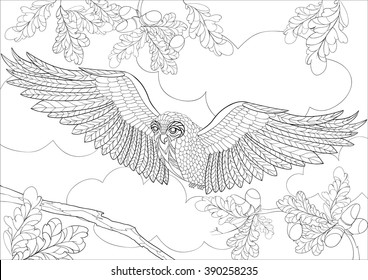 Owl Coloring Pages High Res Stock Images Shutterstock