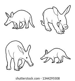Aardvark Vector Illustration Hand Drawn Animal Cartoon Art
