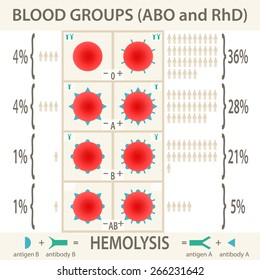 The ABO and RhD blood groups systems diagram and infographic. Vector Illustration EPS10.