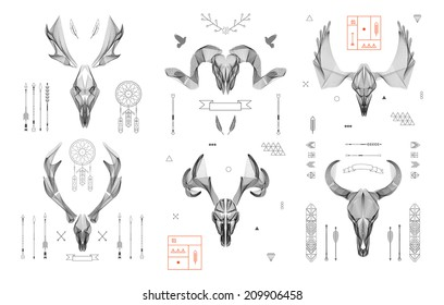 Abstract animal background line art. Skull collection. Antlers. Vector. Isolated.