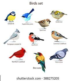 Abstract art bird, Logo birds icon set vector illustration, Rock dove bird, European crested tit bird, Goldcrest bird, Common chaffinch bird, sparrow bird, Red Cardinal bird, bullfinch. Birds set