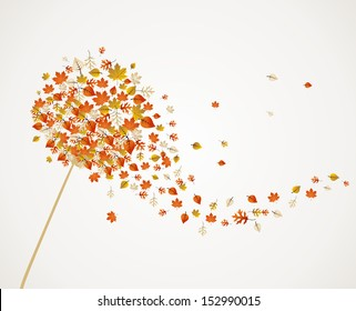 Abstract autumn concept. Dandelion with flying leaves and flower petals background. EPS10 vector file organized in layers for easy editing.
