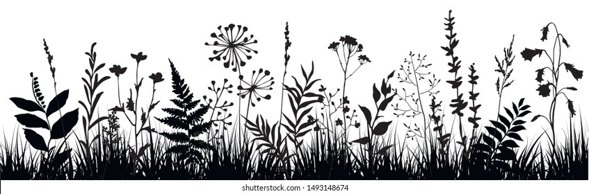 Abstract background with black silhouettes of meadow wild herbs and flowers. Wildflowers. Field. Floral background. Wild grass. Vector illustration.