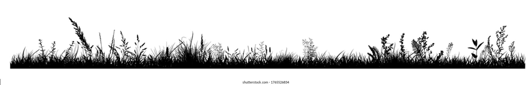 Abstract background with black silhouettes of meadow wild herbs and flowers. Wildflowers. Floral background. Wild grass. Vector illustration.