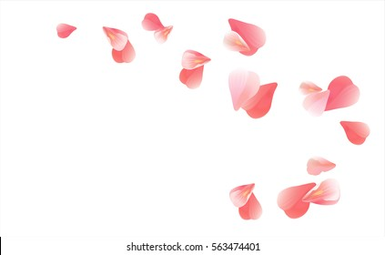 Abstract background with flying pink, red rose petals. Vector illustration isolated on white background.
