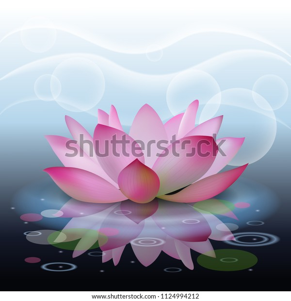 Abstract Background Lotus Lotus Flower On Stock Vector Royalty Free