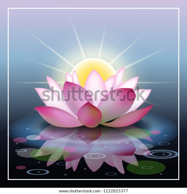 Abstract Background Lotus Sunset Lotus Flower Stock Vector Royalty