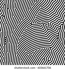 Abstract background of vector organic irregular lines and dots pattern. Black and white chaotic design
