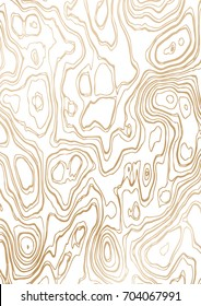 Abstract background of wood grain. It is a vector illustration.