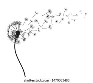 Abstract black dandelion, flying seeds of dandelion - for stock vector