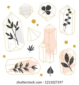 Abstract crystals with plants nside on white background. Vector hand drawn illustration