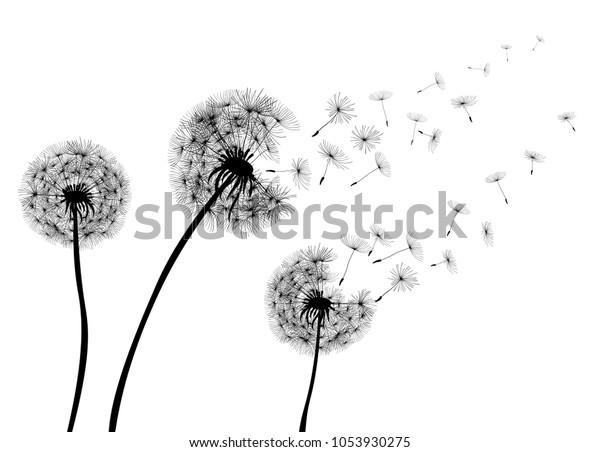 Абстрактные Одуванчики одуванчики с летающими семенами — фондовый вектор