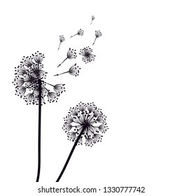 Abstract Dandelions silhouette dandelion with flying seeds