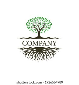 Abstract dynamic tree logo design, root vector
