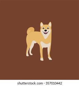 Abstract flat design vector shiba inu dog puppy illustration
