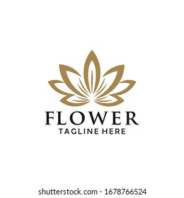abstract flower logo design vector