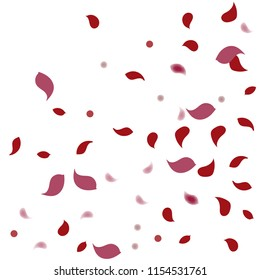 Abstract flower petals confetti background. Falling red petals decoration vector. Romantic valentines wedding celebration design for invitation card. Natural floral flying dynamic illustration design.