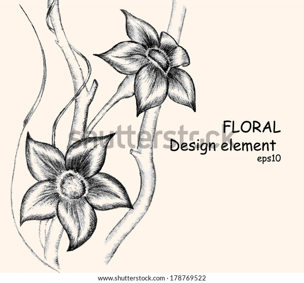 Abstract Flowers Drawing Pencil Vector Illustration Stock