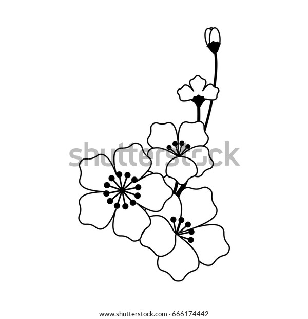 Abstract Flowers Outline On White Background Abstract