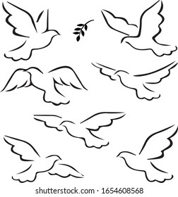 abstract flying dove sketch set vector illustration